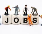 Thông tin tuyển dụng (October-2017)